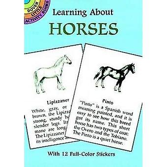 Kennenlernen der Pferde (lernen über Bücher