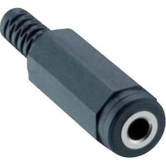 3.5 mm audio jack Socket, straight Number of pins: 3 Stereo Black Lumberg 1520 01 1 pc(s)