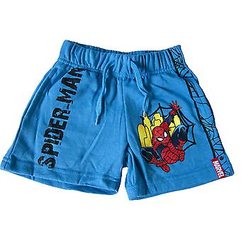 Boys Marvel Spiderman Summer Shorts
