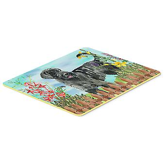 Carolines Treasures  CK1222CMT Giant Schnauzer Spring Kitchen or Bath Mat 20x30