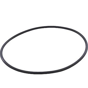 Hayward O-504 O-Ring for Easy Clear CX400G Filter Tank