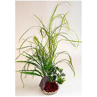 Sydeco Lily Grass Rock Sydeco (Fish , Decoration , Artificitial Plants)