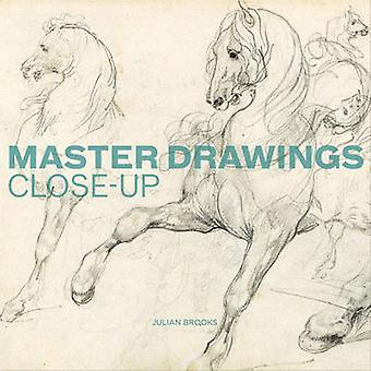 Master Drawings - Close Up by Julian Brooks - 9781606060193 Book