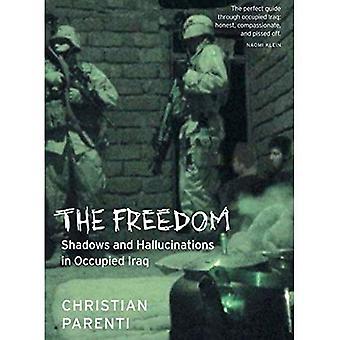 Libertà: Ombre e allucinazioni nell'Iraq occupato