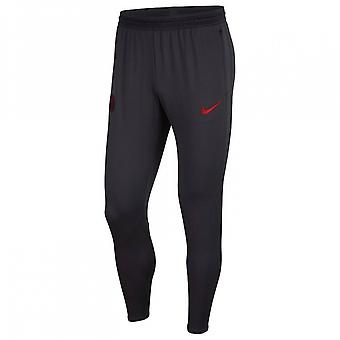 2019-2020 PSG Nike Strike Training Pants (Oil Grey)