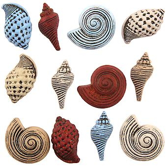 Bouton Theme Pack-Seashells BTP-4262