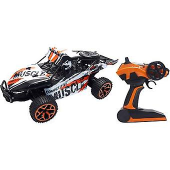 Amewi 22220 Extreme D5 1:18 RC model car for beginners