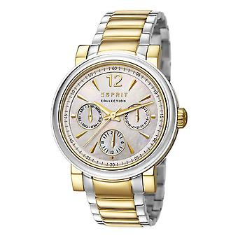 ESPRIT collection ladies watch wristwatch Penia stainless steel EL102032F04
