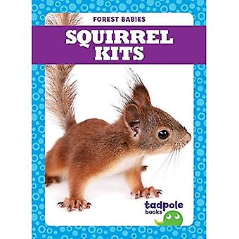Squirrel Kits