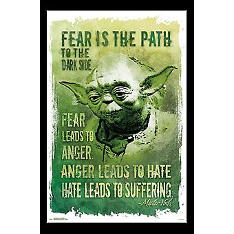 Star Wars - Path to the Dark Side Poster Print