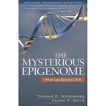 Mystiska epigenomet: Vad som finns bortom DNA