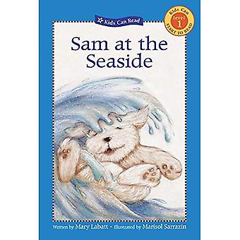 Sam at the Seaside (Kids Can Read!: Level 1 Start to Read)