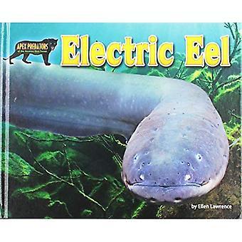 Electric Eel (Apex Predators of the Amazon Rain Forest)