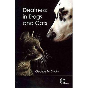 Dövhet hos hundar och katter