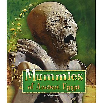 Mummies of Ancient Egypt (Fact Finders: Ancient Egyptian Civilization)