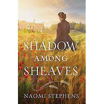 Shadow Among Sheaves