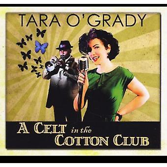 Tara O'Grady - Kelte im Cotton Club [CD] USA import