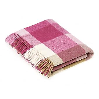 Bronte By Moon Rome Check Shetland Wool Throw - Pink/Natural