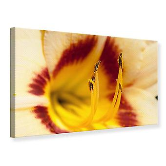 Canvas Print Giant Lily