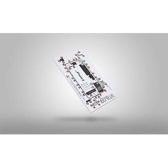 DottorPod iScrews screw holder and diagram - iPhone 8