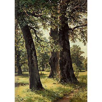 Oak,Ivan Shishkin,60x43cm