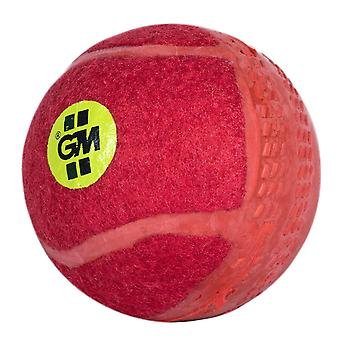 Gunn & Moore Swingking Training Cricket Ball Red