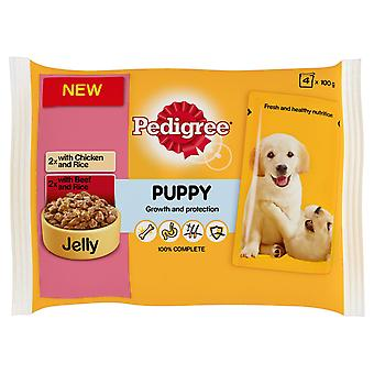 Pedigree Pouch Jelly Puppy Chicken & Rice / Beef & Rice 4x100g (Pack of 13)