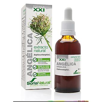 Soria Natural Garden Angelica Extract 21st Century (Herbalist's , Natural extracts)