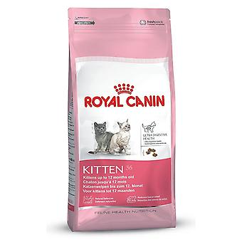 Royal Canin KITTEN 36 gatto cibo secco Mix 10kg