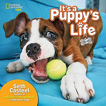 Es vida de un cachorro (animales))