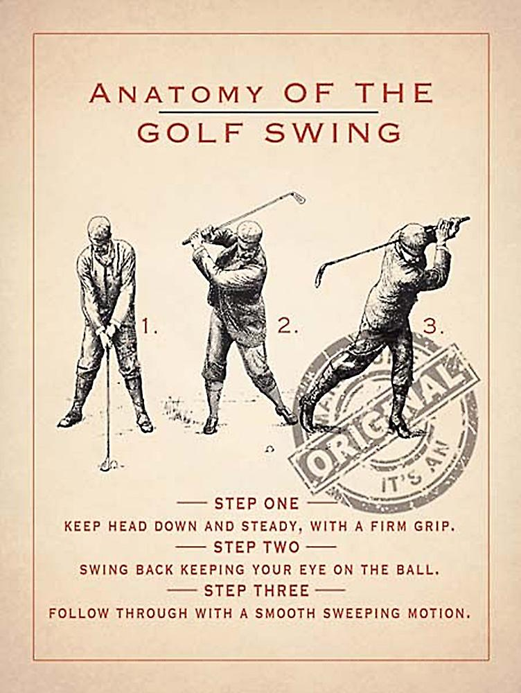 Anatomy Of A Golf Swing metal sign  (og 4030)