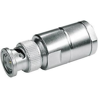 BNC connector Plug, straight 50 Ω Telegärtner J01000A1940 1 pc(s)