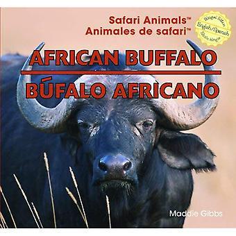 African Buffalo (Safari Animals)