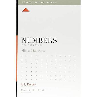Números: Um estudo de 12 semanas (sabendo que a Bíblia)