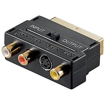 SCART Adapter AV-Block, 3 Phono Composite- oder S-Video mit In/Out Schalter Gold