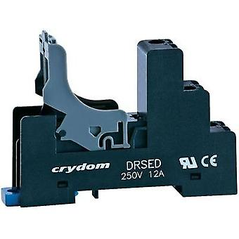 Relay socket 1 pc(s) Crydom DRSED Compatible with