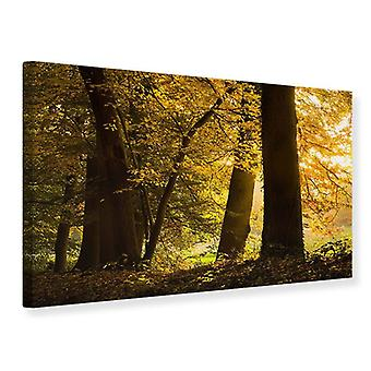 Canvas Print Autumn Leaves