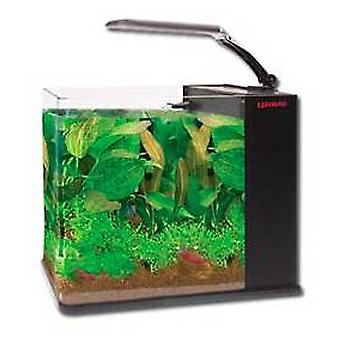 Wave Aquarium Aqua noir Orion 18 L (poissons, aquariums)
