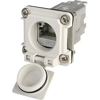 N/A RJ45 socket, mount J00020A0481 Light grey