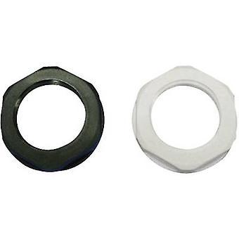 Locknut PG29 Polyamide Black (RAL 9005) KSS EGRL29 1 pc(s)