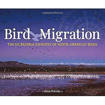 Bird Migration: The Incredible Journeys of North American Birds (Wildlife Appreciation)