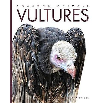 Amazing Animals Vultures by Kate Riggs - 9781608184927 Book