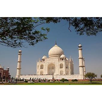 アジア インド タージ ・ マハルの上の木とフレーミング要素ブレント Bergherm ポスター印刷として