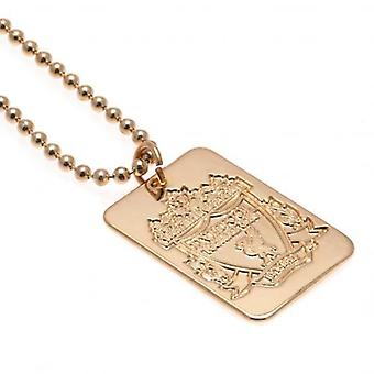 Liverpool-Gold überzogen Dog Tag & Chain