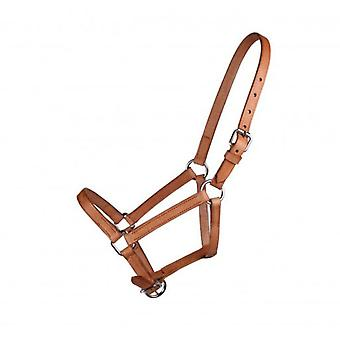 QHP Pony Bridle Chico Beige 01