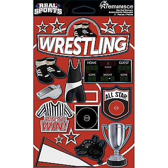 Véritable sport autocollants dimensions 4,5 « X 6 » feuille Wrestling Rs 3D 156