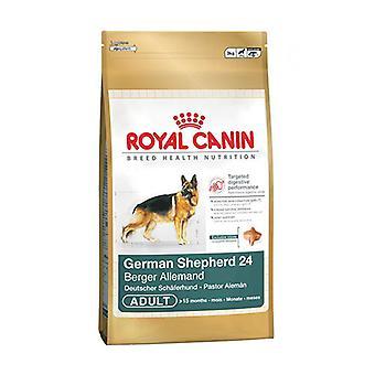 Royal Canin Tyskeren Shepherd voksen tørr hunden næringen