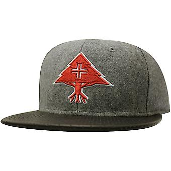 LRG Big Trees Snapback Grey