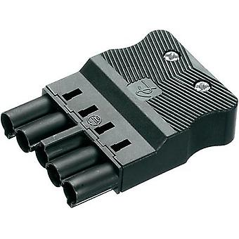 Mains connector Series (mains connectors) AC Plug, straight Total number of pins: 4 + PE 16 A Black Adels-Contact AC 16