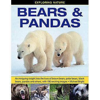 Exploring Nature - Bears & Pandas - An Intriguing Insight into the Live